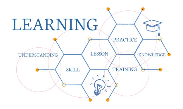 Why Fast Learning Curves are So Important to Startups